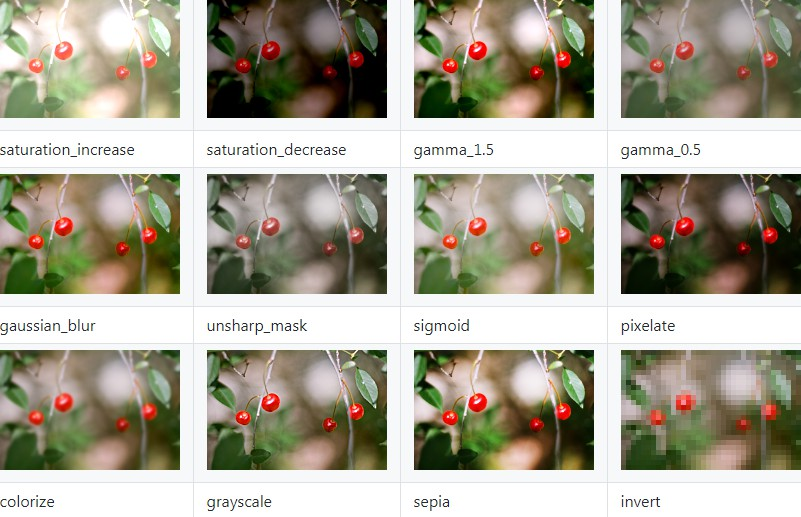 Package of image processing filters